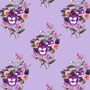 Pansy Deep Purple Lavender