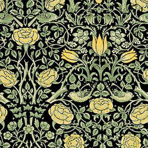 Medium Yellow Tudor Roses Black