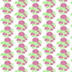 Pink Flower_ White