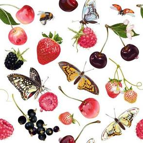 Berry butterfly pattern