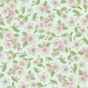 Apple Blossom - seafoam background