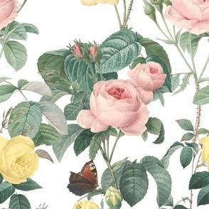 Belles Fleurs ~ Jolie Rayure ~ White