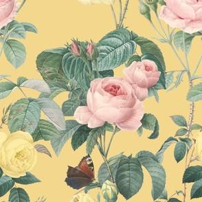 Belles Fleurs ~ Jolie Rayure ~  Adolphus