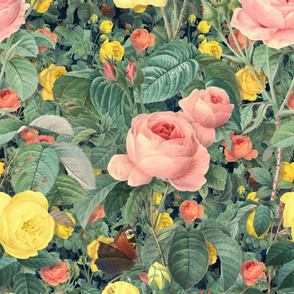 Belles Fleurs ~ Jolie Jardin
