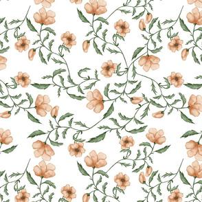 Peachy flowers