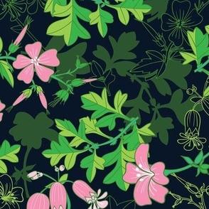 Forest Wildflowers  / Dark Background