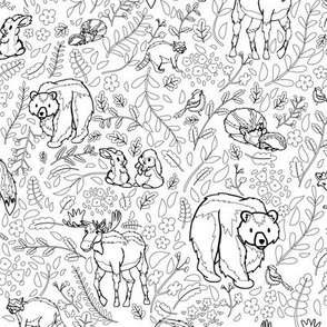 Emerald Forest - Coloring Book