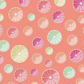 colorful citrus slices on vermillion