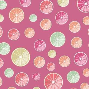 colorful citrus slices on raspberry