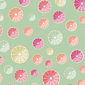 Colorful citrus slices on green