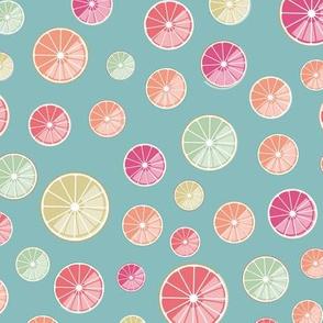 colorful citrus slices on blue