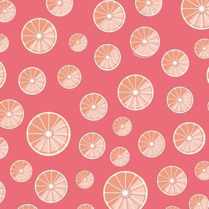 colourful citrus slices on pink