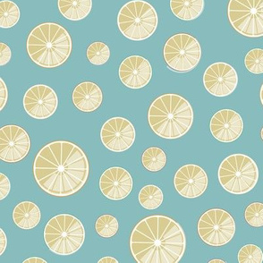 citrus slices on cyan