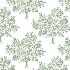 Oak Tree (Soft Olive)