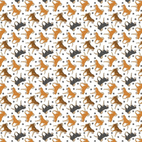 Trotting Shiba Inu and paw prints B - tiny white
