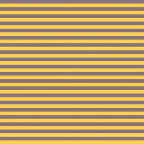 Yellow and purple horizontal stripes