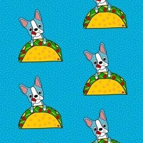 Blue Bostons loves Tacos