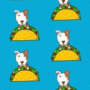 Pit Bulls love Tacos