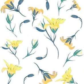 Sweet Geranium Yellow