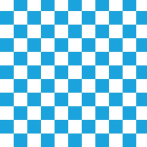 Oktoberfest Bavarian Blue and White Checkerboard