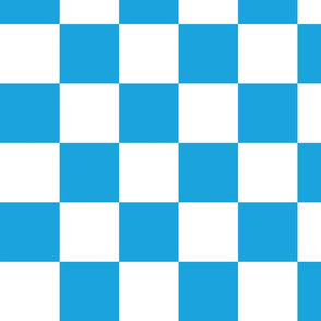 Oktoberfest Bavarian Large Blue and White Checkerboard