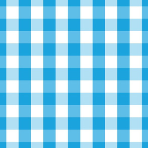 Oktoberfest Bavarian Blue and White Large Gingham Check