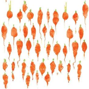 itsy_bitsy_carrots_cestlaviv