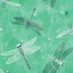 Emerald Dragonflies