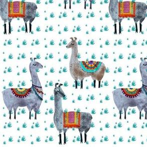 Llama friends