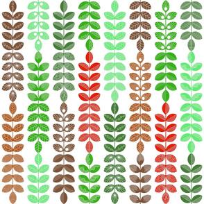 geometric herbs