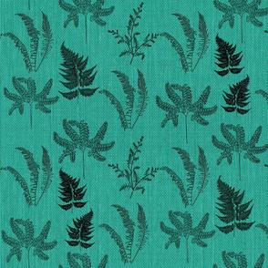 Emerald Forest Ferns
