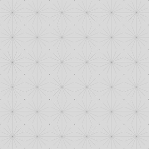Nineteen Sixty Starburst: Pure Gray Geometric