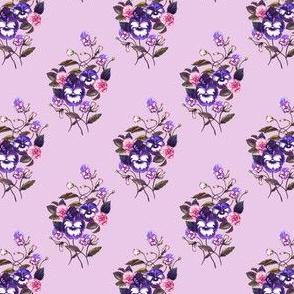 Pansy Dark Blue Plum Lilac