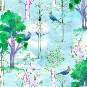 Jay's Forest