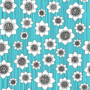 white flowers on blue