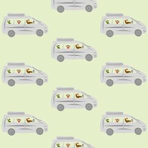 Grey van on green