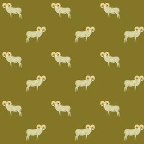 Big sheep on mustard
