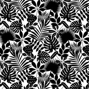 Black And White Tropical Leaf