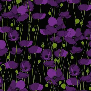 Purple poppy repeat black - medium