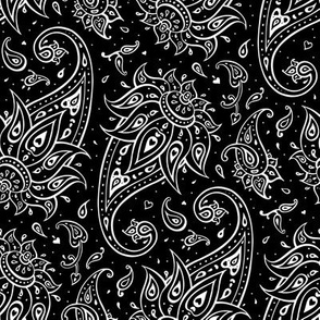 Paisley black and white