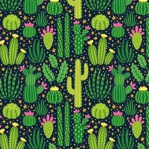 Cacti summer. Dark background. Small scale