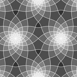 07763521 : SC3spiral : cobweb