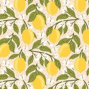 Lemons and butterflies