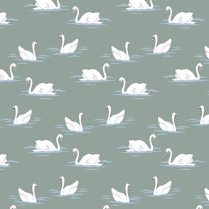 swans_150