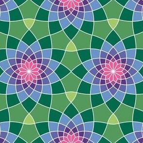 07764215 : SC3spiral : synergy0011