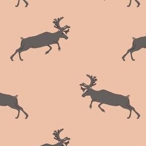 Brown deer on peach