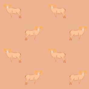 Peach Big sheep