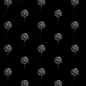 2018 Fireworks 1