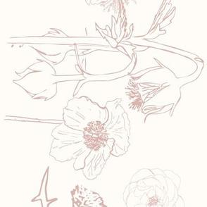 Wildflower Border-spring-02