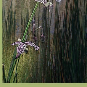Vanilla-Lily with Reeds